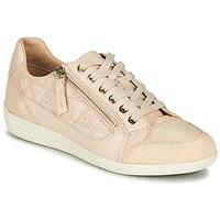 Topánky Ženy Nízke tenisky Geox D MYRIA Svetlá telová / Béžová