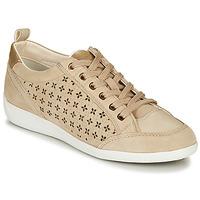 Topánky Ženy Nízke tenisky Geox D MYRIA Béžová