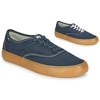 Topánky Muži Nízke tenisky Element PASSIPH Modrá