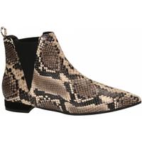 Topánky Ženy Nízke čižmy Andrea Zali DIAMANT roccia
