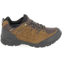 Topánky Muži Turistická obuv Aigle Vedur Low MTD Marron Hnedá