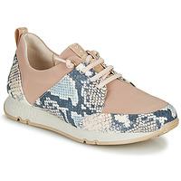 Topánky Ženy Nízke tenisky Hispanitas KIOTO Béžová / Modrá