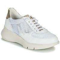 Topánky Ženy Nízke tenisky Hispanitas CUZCO Biela / Zlatá / Ružová