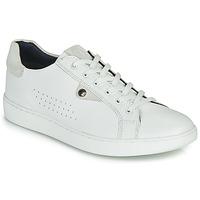 Topánky Muži Nízke tenisky Base London BUZZ Biela