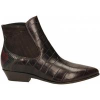 Topánky Ženy Nízke čižmy Lemaré COCCO ULISSE t-moro