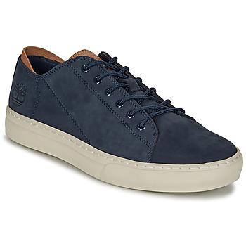 Topánky Muži Nízke tenisky Timberland Adv 2.0 Cupsole Modern Ox Modrá