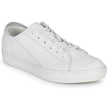 Topánky Muži Nízke tenisky Timberland Adv 2.0 Cupsole Modern Ox Biela