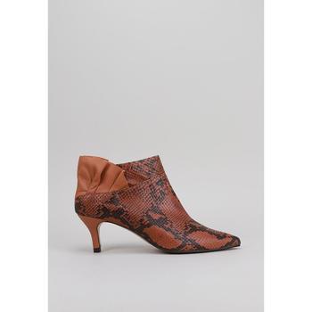 Topánky Ženy Nízke čižmy Roberto Torretta  Hnedá