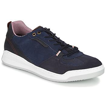 Topánky Muži Nízke tenisky Bullboxer TESSA Modrá