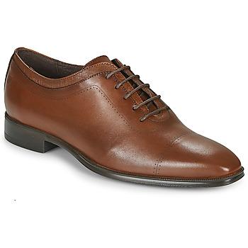 Topánky Muži Richelieu Carlington MINEA Koňaková