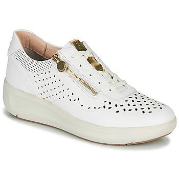 Topánky Ženy Nízke tenisky Stonefly ROCK 10 Biela