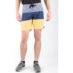 Oblečenie Muži Šortky a bermudy DC Shoes DC SEDYBS03069-BYB0 Multicolor