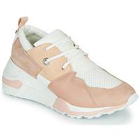 Topánky Ženy Nízke tenisky Steve Madden CLIFF Ružová