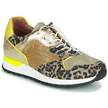 Topánky Ženy Nízke tenisky Mjus CAST Kaki / Leopard