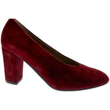 Topánky Ženy Lodičky Calzaturificio Loren LO60887bo nero
