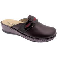 Topánky Ženy Nazuvky Calzaturificio Loren LOM2803bo grigio