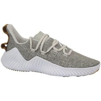 Topánky Muži Fitness adidas Originals Alphabounce Trainer Biela, Béžová