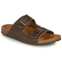 Topánky Muži Sandále André VISON Hnedá