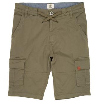 Oblečenie Chlapci Šortky a bermudy Timberland TAO Zelená