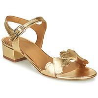 Topánky Ženy Sandále Emma Go POPPY Zlatá