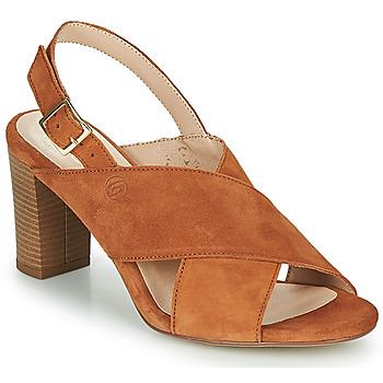 Topánky Ženy Sandále Betty London MARIPOL Koňaková