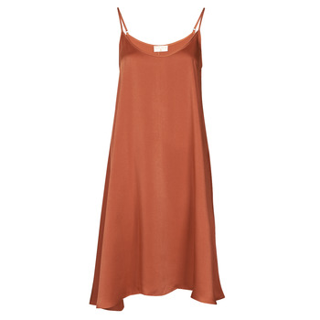 Oblečenie Ženy Krátke šaty Moony Mood FANETTI Hnedá