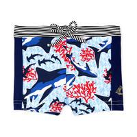 Oblečenie Chlapci Plavky  Petit Bateau FEUILLAGE Viacfarebná