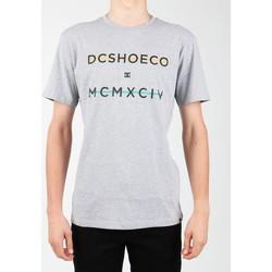 Oblečenie Muži Tričká s krátkym rukávom DC Shoes DC SEDYZT03760-KNFH grey