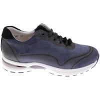 Topánky Ženy Turistická obuv Calzaturificio Loren CLORA1068bl blu