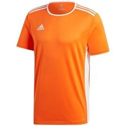 Oblečenie Muži Tričká s krátkym rukávom adidas Originals Entrada 18 Oranžová