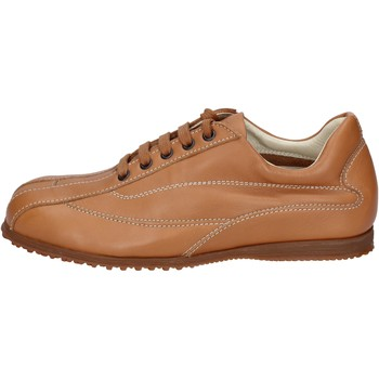 Topánky Muži Nízke tenisky Hogan BN129 Hnedá