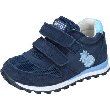 Topánky Chlapci Nízke tenisky Enrico Coveri Tenisky BN683 Modrá