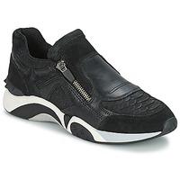 Topánky Ženy Nízke tenisky Ash HOP Čierna