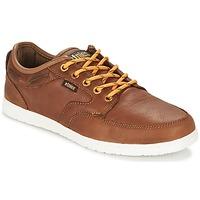 Topánky Muži Nízke tenisky Etnies DORY Hnedá