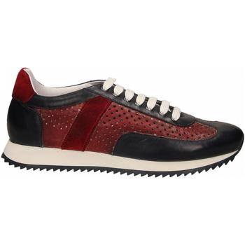 Topánky Muži Nízke tenisky Brecos SIER blu