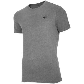 Oblečenie Muži Tričká s krátkym rukávom 4F TSM003 Sivá