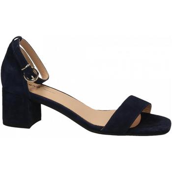 Topánky Ženy Sandále Frau CAMOSCIO navy