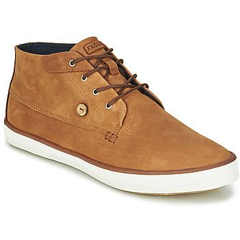 Topánky Muži Členkové tenisky Faguo WATTLE Hnedá