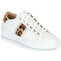 Topánky Ženy Nízke tenisky Geox PONTOISE Biela / Leopard