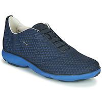 Topánky Muži Nízke tenisky Geox U NEBULA E Modrá