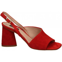 Topánky Ženy Sandále Tosca Blu MAIORCA c20-rosso