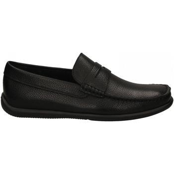 Topánky Muži Mokasíny Frau BRIO nero
