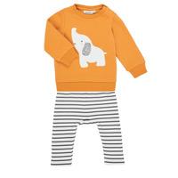 Oblečenie Dievčatá Komplety a súpravy Noukie's Z051372 Viacfarebná