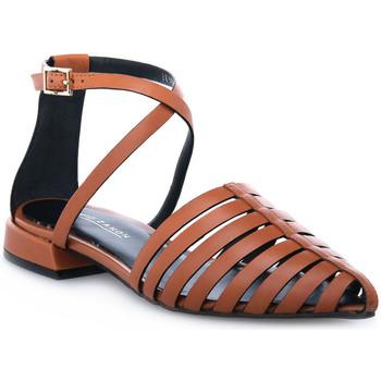 Topánky Ženy Sandále Elvio Zanon PARMA CUOIO Marrone