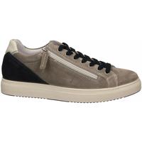 Topánky Muži Nízke tenisky IgI&CO USH 51389 grigio