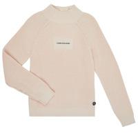 Oblečenie Dievčatá Svetre Calvin Klein Jeans IG0IG00680-PGB Šedá