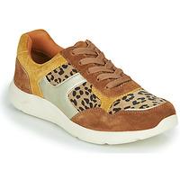 Topánky Ženy Nízke tenisky Damart 62328 Béžová / Žltá