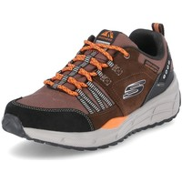 Topánky Muži Nízke tenisky Skechers Low Trail Hnedá