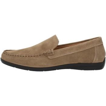 Topánky Muži Mokasíny Imac 500711 Beige