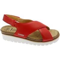 Topánky Ženy Sandále Mephisto MEPHTALLYro rosso